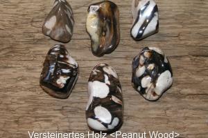 Vertseinertes-Holz-Peanut-Wood-